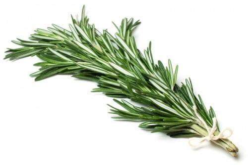 Le romarin a des propriétés antioxydantes.