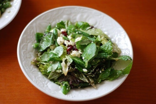 salade-cresson-Richard-Scoop-500x334