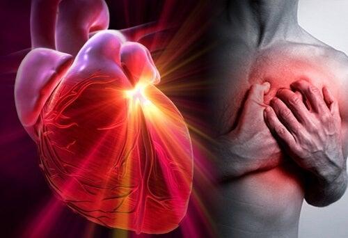Un régime pour réduire les risques d'infarctus et d'ictus