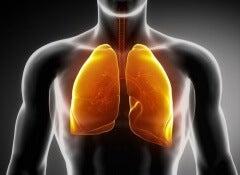 Nettoyer-les-poumons-500x417