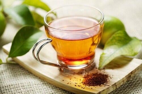 Découvrez les 2 infusions naturelles les plus riches en magnésium : thé de rooibos