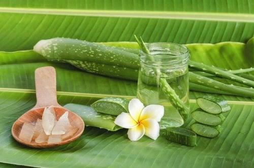 L'Aloe vera aide à dégonfler les chevilles