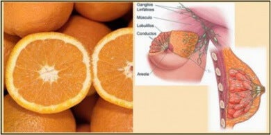 citron-sein