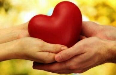 caractéristiques des personnes hypersensibles : l'empathie
