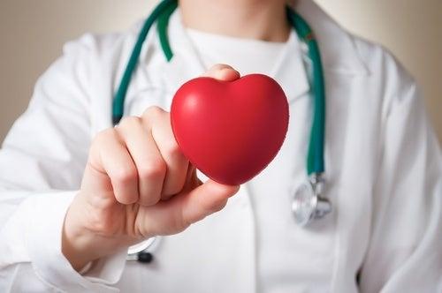 Préparer la pastèque et en consommer régulièrement a des bienfaits sur le cœur.