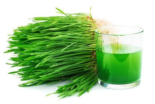 Jus de chlorophylle
