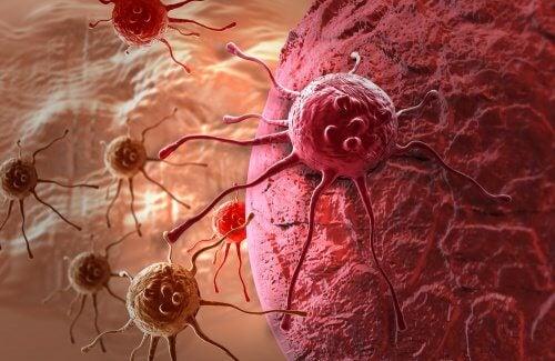Cancer-500x325