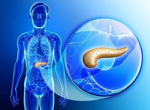 Comment désintoxiquer le pancréas de manière naturelle ?