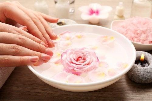 toniques faciaux à la rose