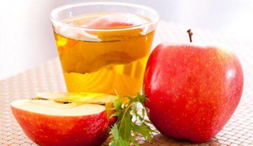 vinaigre de cidre de pommes