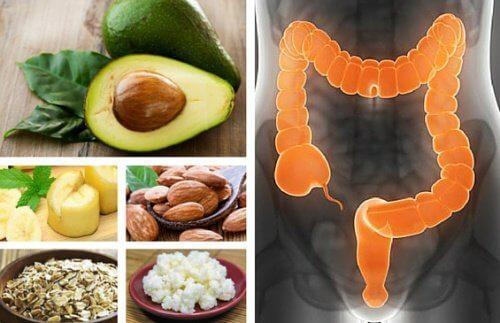 6 aliments pour traiter le syndrome du côlon irritable