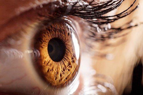 une nouvelle lentille pour une vue parfaite