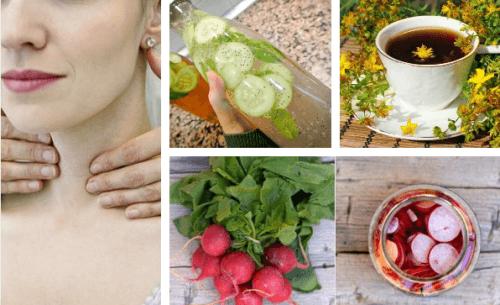 Plantes médicinales pour réguler et prendre soin de sa thyroïde