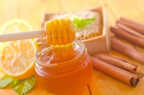 Bienfaits du miel et de la cannelle - Améliore ta Santé
