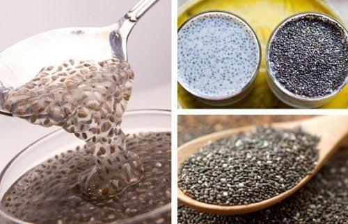 Les graines de chia, un remède naturel contre la constipation