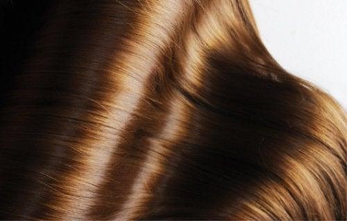 4 remèdes aux plantes pour prendre soin de la beauté de vos cheveux