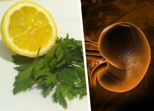 8 remèdes naturels pour traiter l'inflammation du rein (la néphrite)