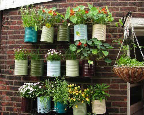 Faites de votre balcon votre petit jardin potager particulier