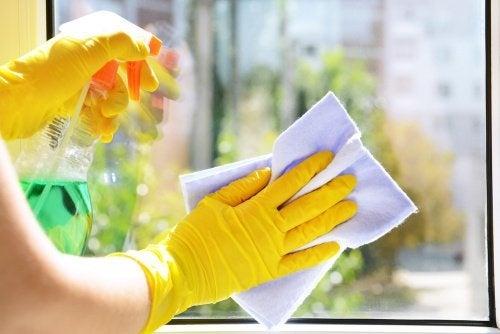6 lave-vitres écologique fait maison
