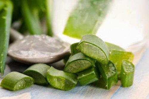 les applications du gel d'aloe vera fait maison pour la santé