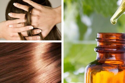Comment préparer un sérum naturel pour nourrir et réparer les cheveux chez soi ?