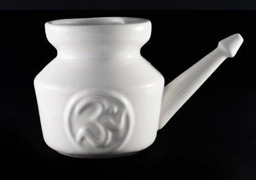 Poire-nasale-500x351