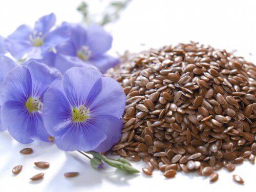 remèdes naturels contre la constipation : graines de lin