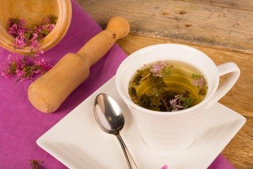 Les meilleures plantes médicinales contre les symptômes de la ménopause