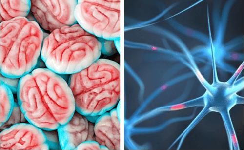 Comment le cerveau réagit-il quand on arrête de manger du sucre ?