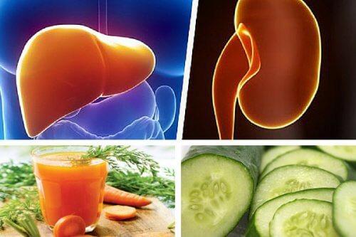 Un jus de carotte et de concombre pour fortifier le foie et les reins