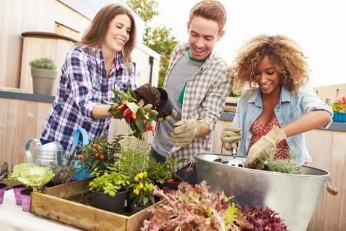 Trois personnes qui font du jardinage