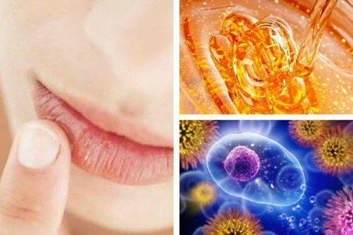 10 bienfaits merveilleux du miel biologique