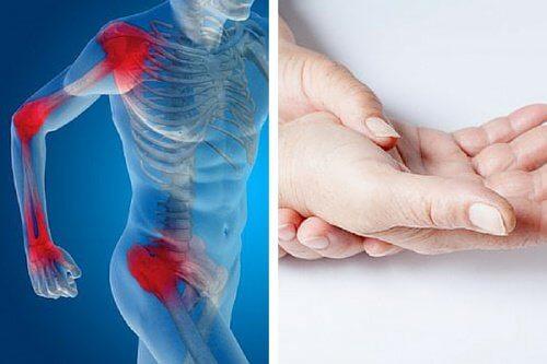 Découvrez quels sont les aliments qui aident à régénérer le cartilage