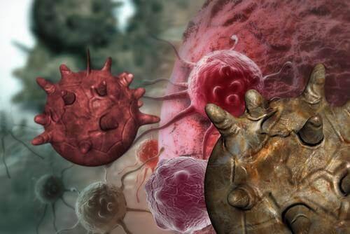10 aliments anticancérigènes qu'il faut consommer