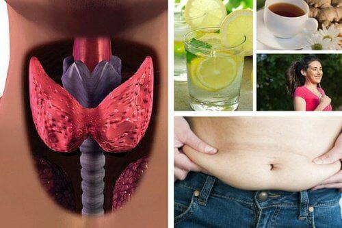 Perdre du poids quand on a une hypothyroidie