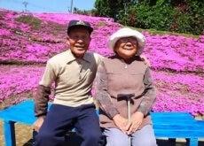 Fleurs-aveugle-deux-620x349-500x281
