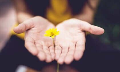7 habitudes pour être optimiste