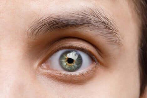 Zoom sur un oeil