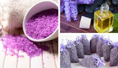 10 utilisations de la lavande à la maison, dans les cosmétiques et la médecine