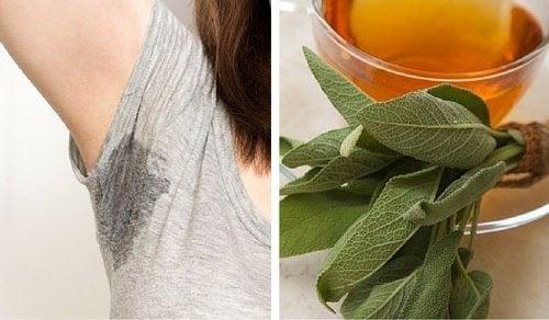 6 remèdes maison pour contrôler la transpiration