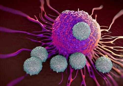 La lutte contre le cancer