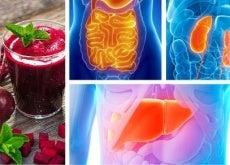 Comment-detoxifier-chaque-organe-vital-500x292