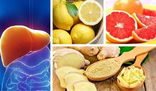 Purge hépatique et rénale avec du citron, du pamplemousse et du gingembre
