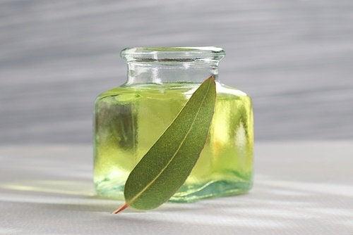huile d'eucalyptus pour éloigner les insectes