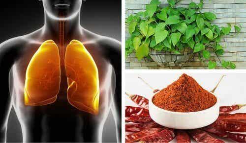 Comment faire une purification des poumons et des bronches ?