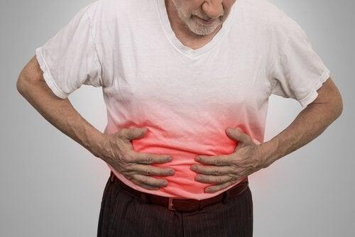 Le pancréas est une glande abdominale