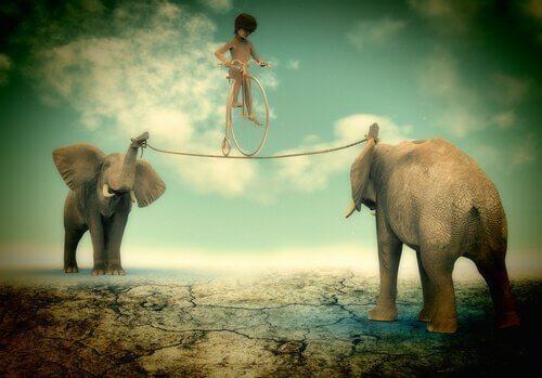 Enfant-en-equilibre-sur-deux-elephants-500x349