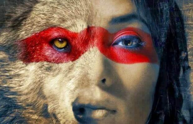 L'avis des brebis n'empêche pas le loup de dormir