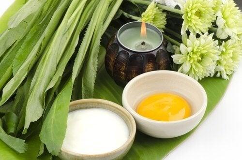 Essayez le masque mammaire à base d'ingrédients naturels.