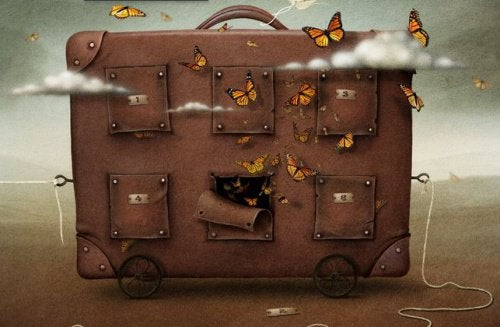Valise-papillons-500x327